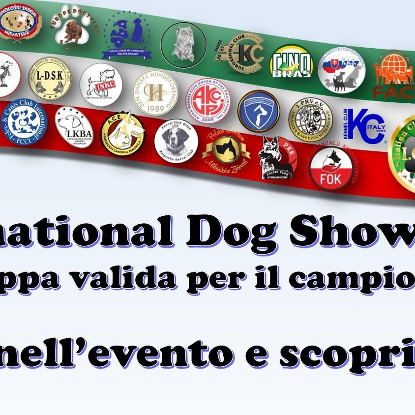 International Dog Show di Cicciano