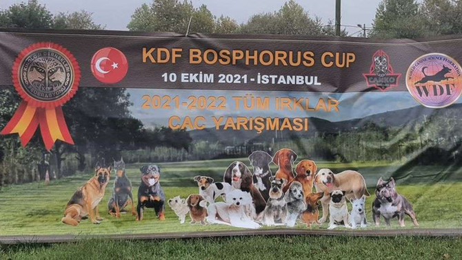KDF-WDF BOSPHORUS CUP DOG COMPETITION