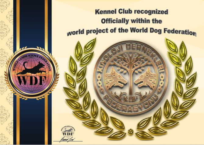 official is the position of the Turkish national club KDF
