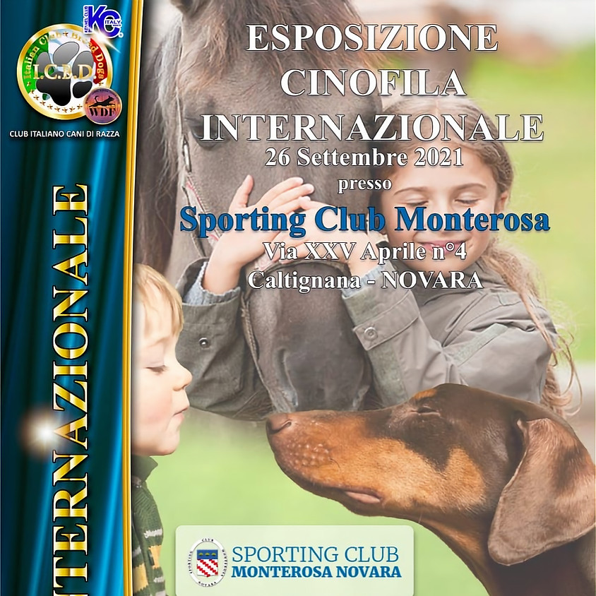 Esposizione Internazionale di Novara