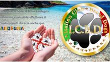 ICBD in Sardegna