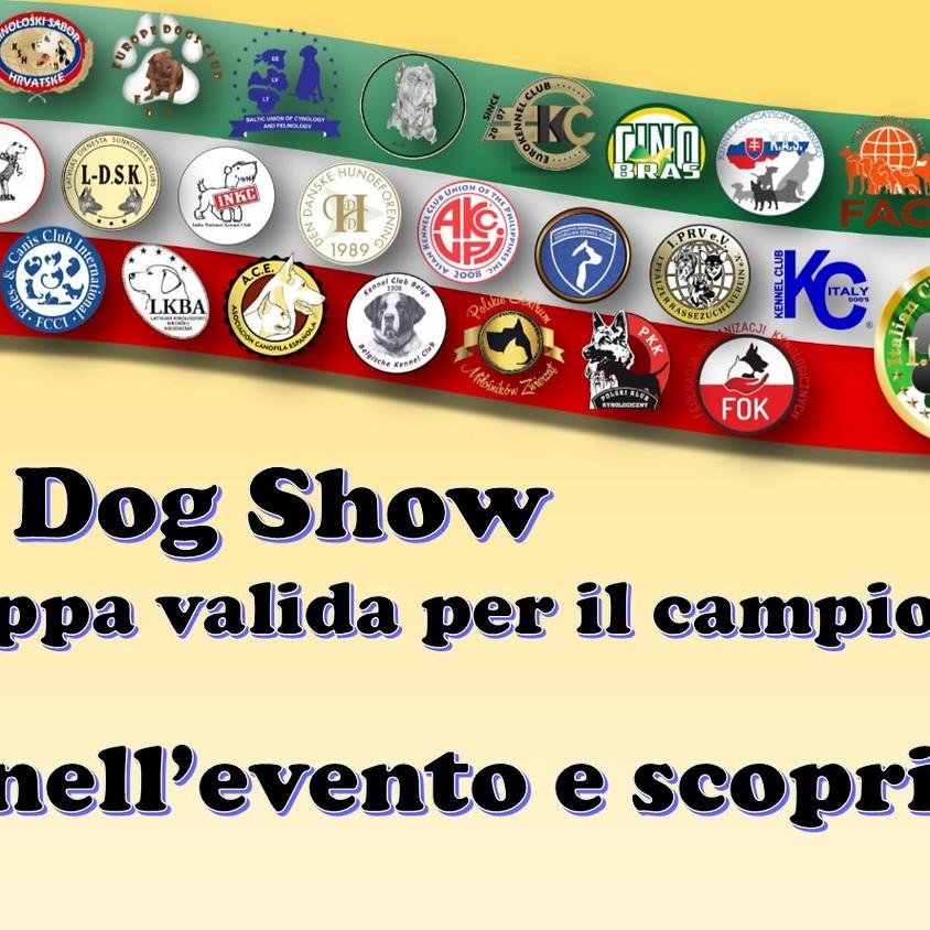 European Dog Show di Camposano NA