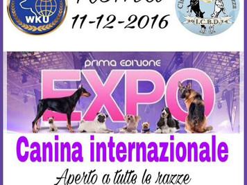 Evento Internazionale di Roma