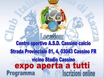 Esposizione Internazionale del Lazio