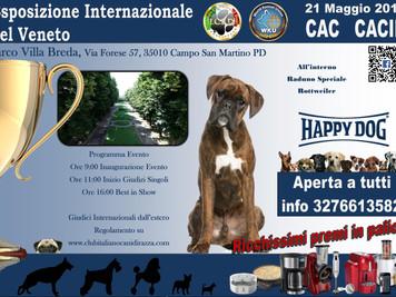 Internazionale di Padova