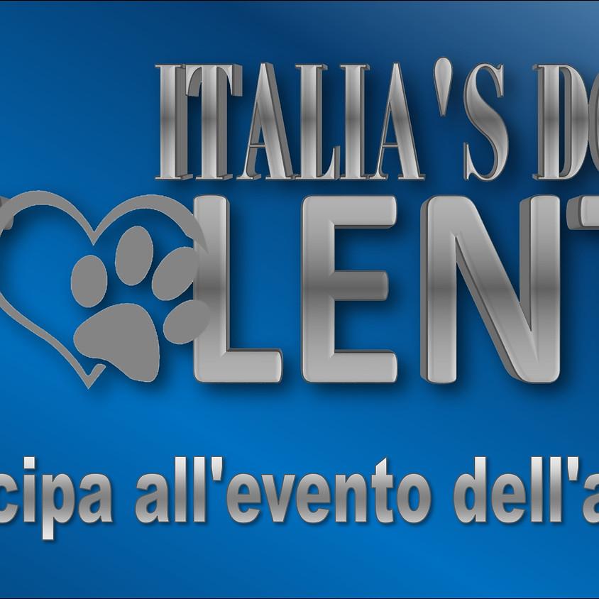 Italian Dog's Talent Online II° Edizione