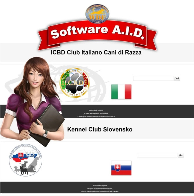 The number one software in the world