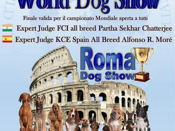 Grande News  Expo Mondiale a Roma...