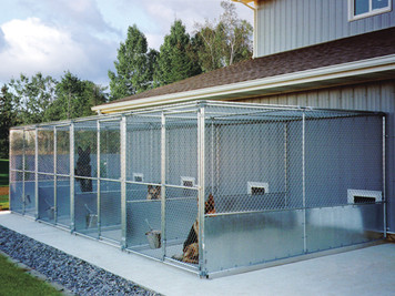 New Italy Kennel ICBD