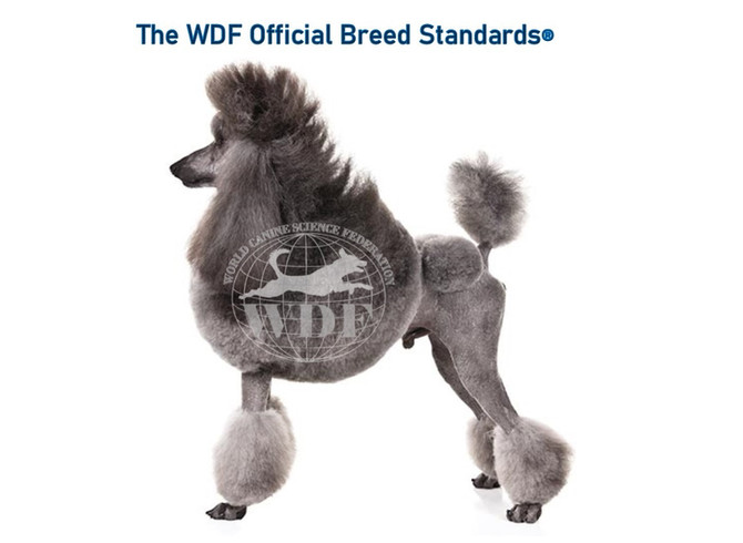 The WDF Official Breed Standards