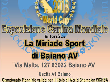 Mondiale World Cup 2018