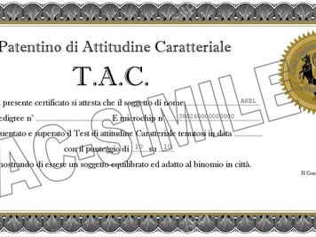 IL T.A.C. E' INIZIATO ISCRIVETEVI