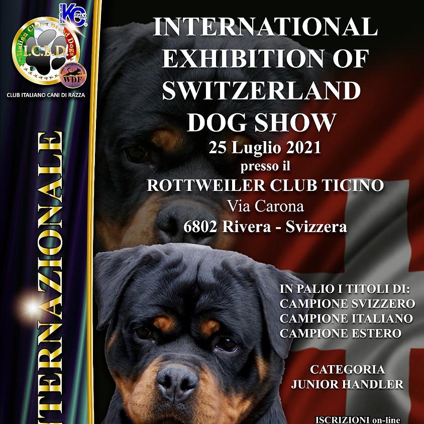 International Exhibition of Switzerland Dog Show