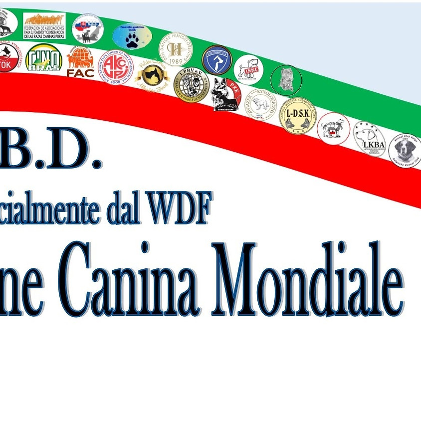 World Dog Show nel Sud Italia
