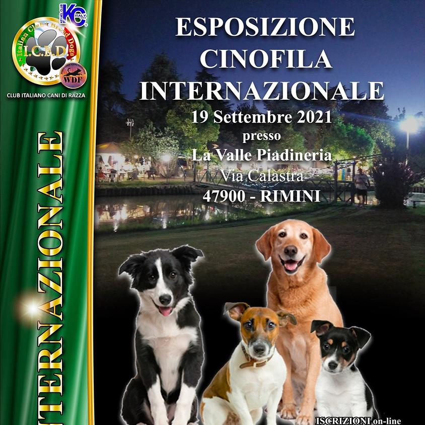 Esposizione Internazionale di Rimini