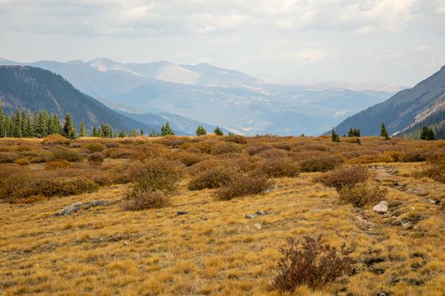Guanella Pass Summit, Autumn Colors_Aspen_Riv