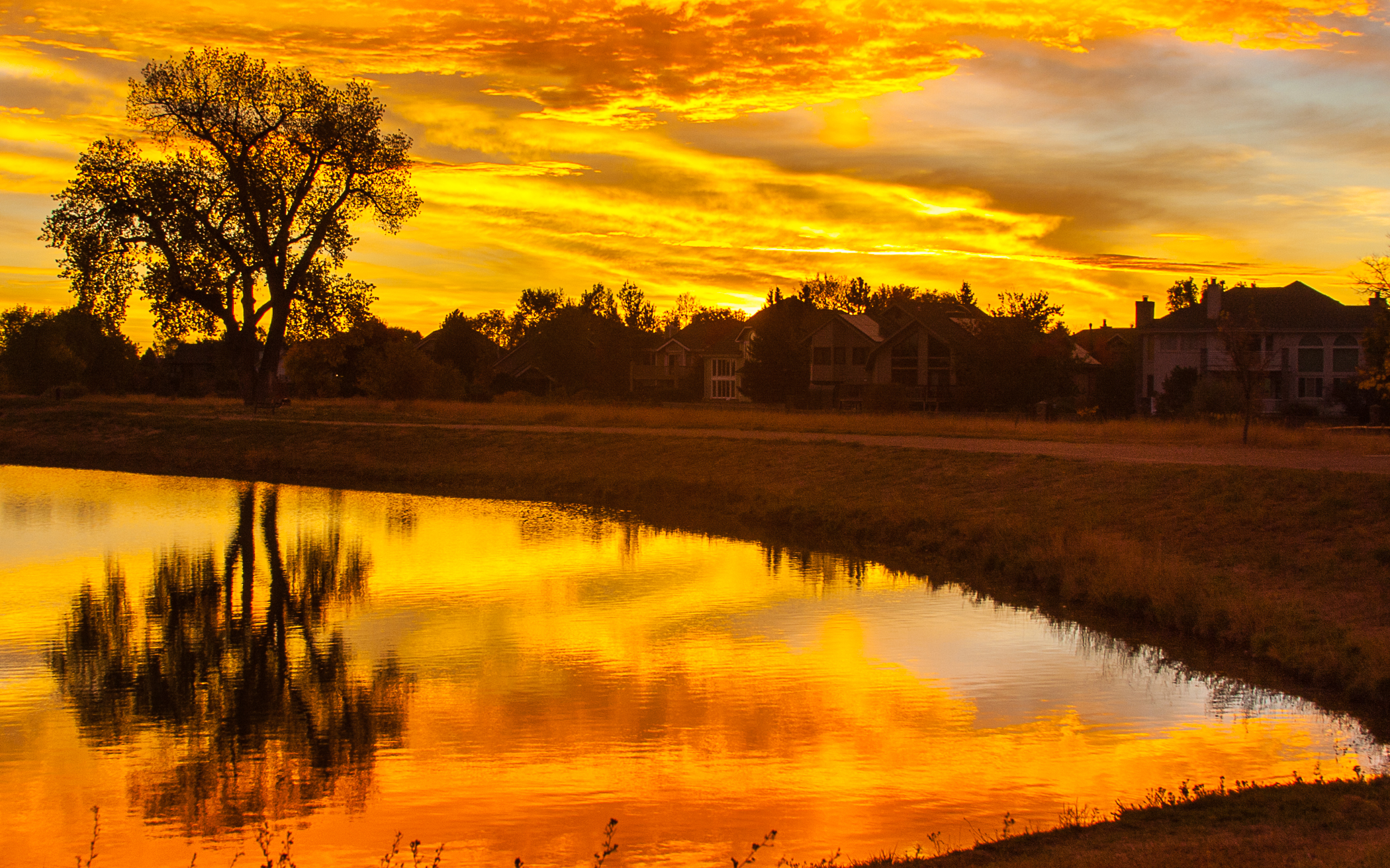 Golden Reflections on Harper Lake