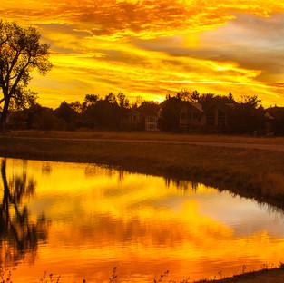 Golden Reflections on Harper Lake.jpg