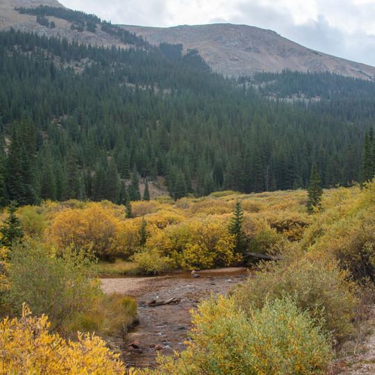 Guanella Pass, Colorado, Autumn Colors