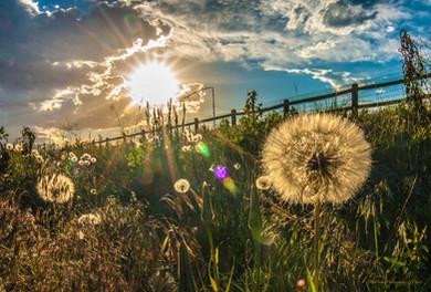 Summer Solstice Sunset at Davidson Mesa