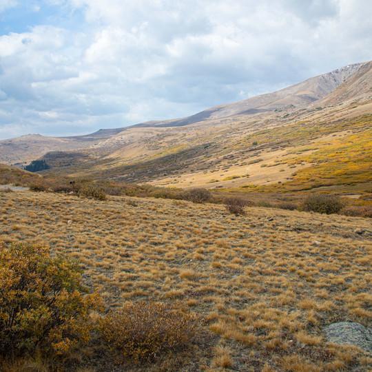 Guanella Pass Summit, Colorad Autumn Colors