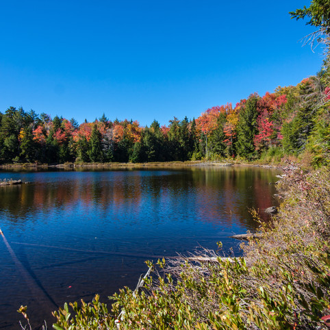 Bumps Pond, Fort Ann, NY
