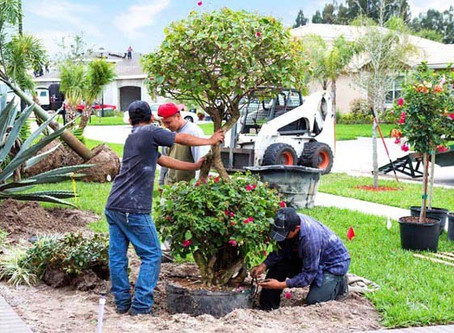 How to Obtain Temporary Landscape Industry Workers Through the H-2B Visa Program