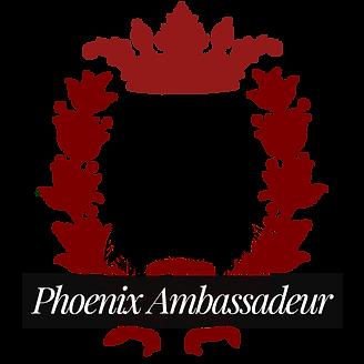 Logo ambassadeur 2 ok.png