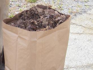 Collecte des résidus verts et des feuilles