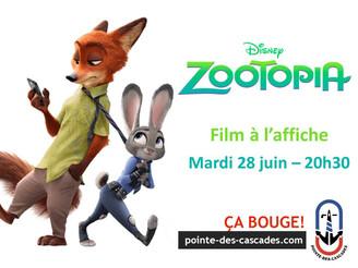 Cinéma en plein air : Zootopia