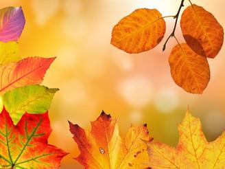 Les bureaux de la municipalité seront fermés le lundi 14 octobre