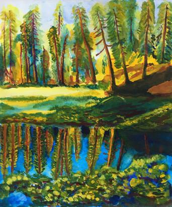Lily pond, Lassen