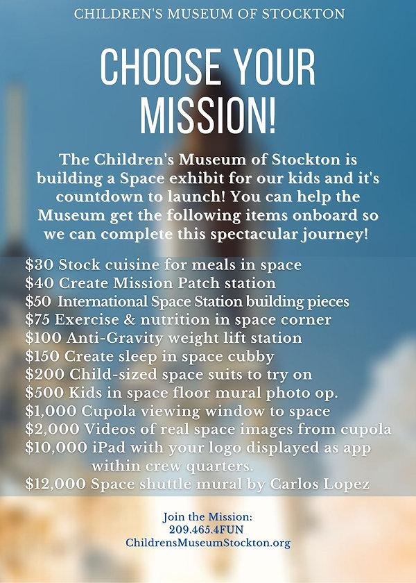 Merrill Mission w_ ideas to help-2.jpg