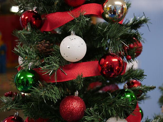 #4&5 Holiday colors & pinecones cu.JPG