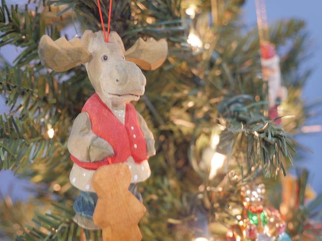 #7 cozy corner moose cu2.JPG