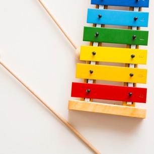 Toy Xylophone $25