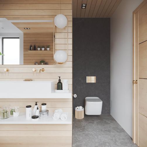 Vanity-with-pendant-light-toilet.jpg