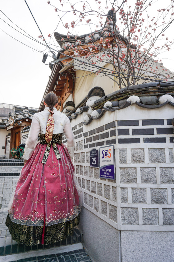 Hanbok Experience in Seoul - Wear Hanbok and Visit Palaces
