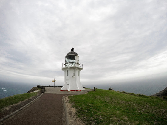 Cape Reinga & Ninety Mile Beach Day Tour