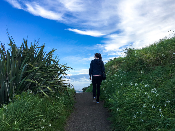 (Half) Day Trip To Auckland's North Shore