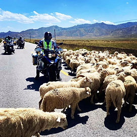 23 Days of Silk Road Motorcycle Trip over 8000km 12