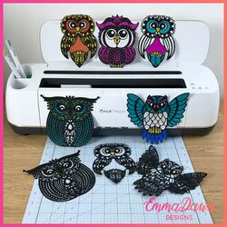 The Beautiful Owl Bundle
