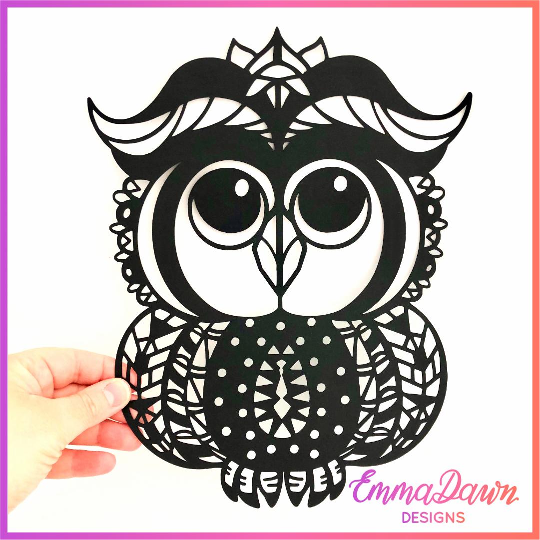 Felicity the Baby Owl