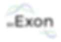 exon logo.png