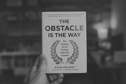 the-obstacle-is-the-way_edited.jpg
