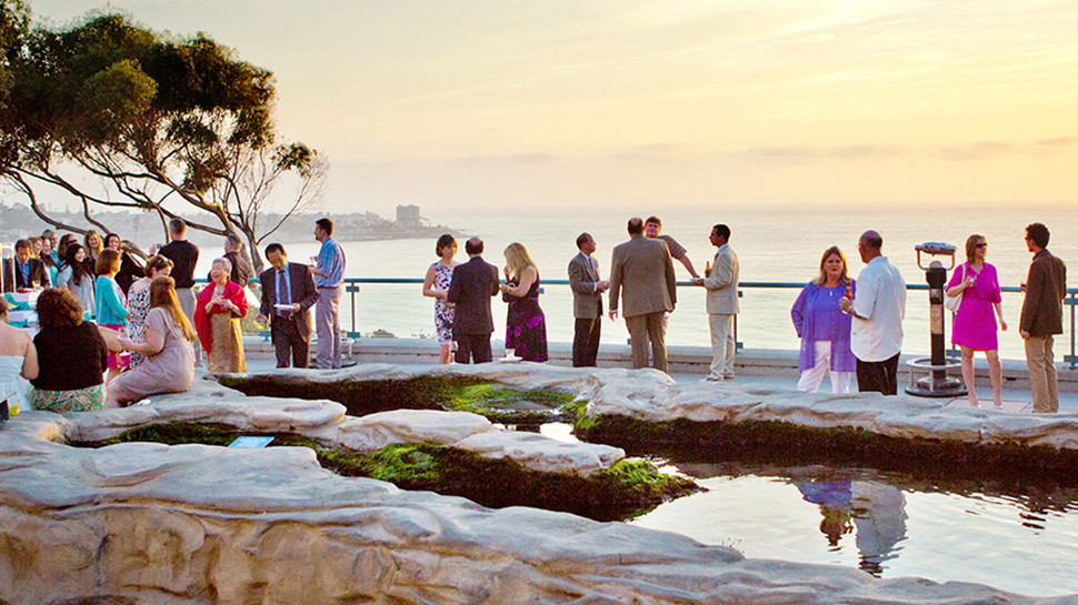 Take in one of the best ocean views in San Diego from our hill-top location.