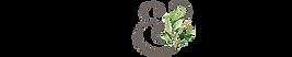 cs-logo-horizontal-color-optimized.png