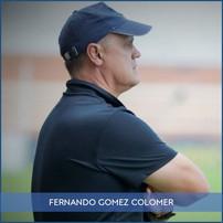 FICHA FERNANDO GOMEZ COLOMER.jpg