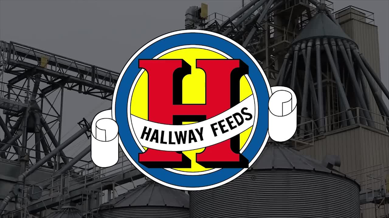 Hallway Logo.jpg