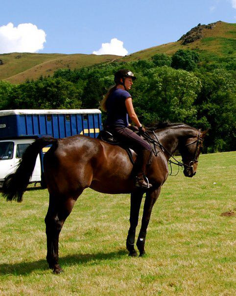 equine bed and breakfast scotland